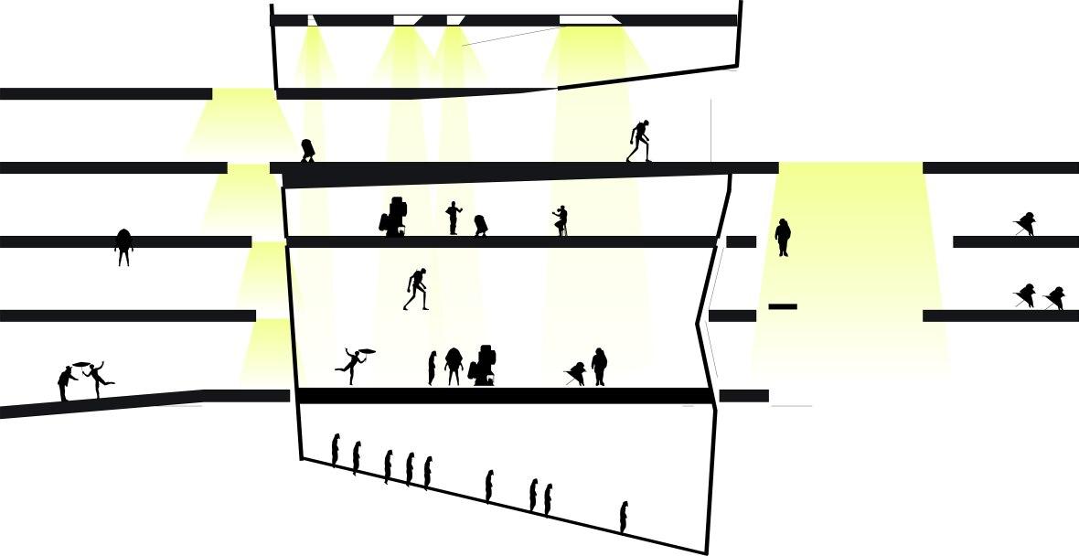 light diagram